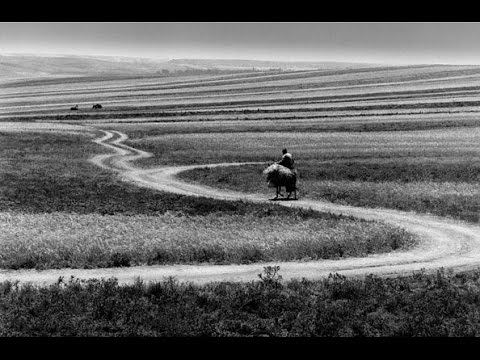 Roads Of Kiarostami
